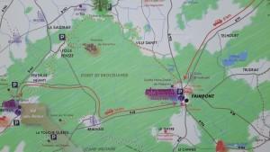 La forêt de Brocéliande à Paimpont