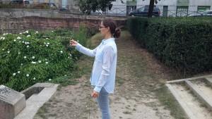 Harmonisation d'un petit parc à Rennes