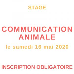 stage de communication animale le 16 mai 2020 au Creusot