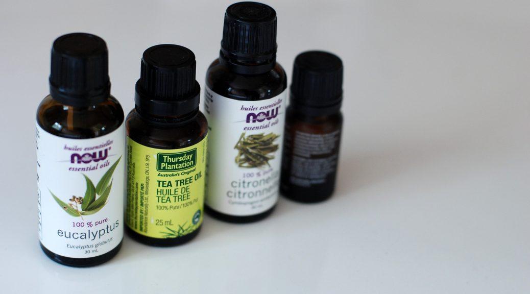 le tea tree, huile essentielle antivirale à large spectre